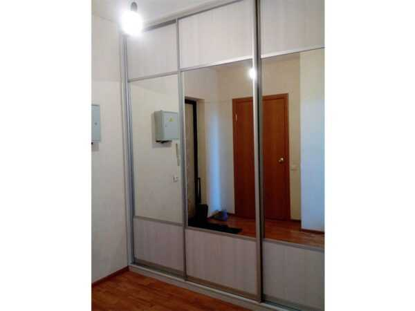 Дверь шкафа-купе зеркало и ЛДСП